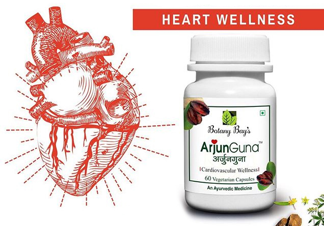 How ArjunGuna is Beneficial in the Treatment of Heart Disease and Stress?